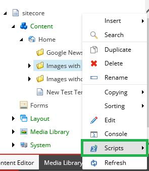 Scripts option
